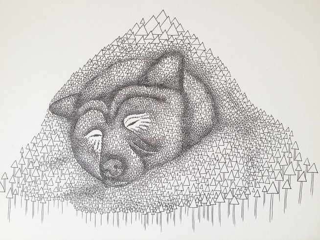 Sleeping bear illustration
